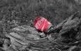 gedeukt Coca Cola blikje op boomstronk, gekleurd afvalblikje met achtergrond in grijstinten