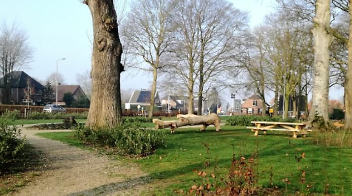 parkje met oude bomen en bankjes