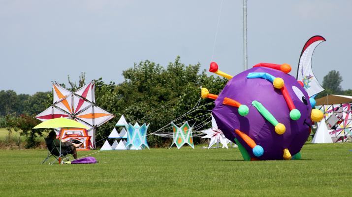 bijzondere vliegers op groen veld