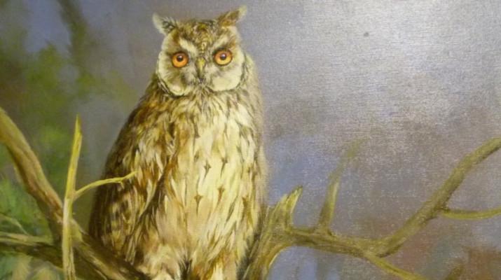 schilderij met uil