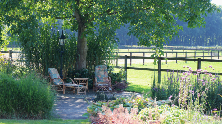 tuin met stoelen aan vijver onder boom met uitzicht op weiland