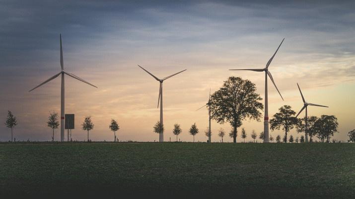 windturbines bij bomenrij